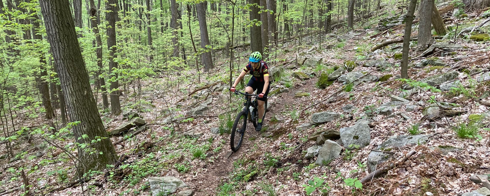 A woman rides a mountain bike through the woods at Blue Knob State Park